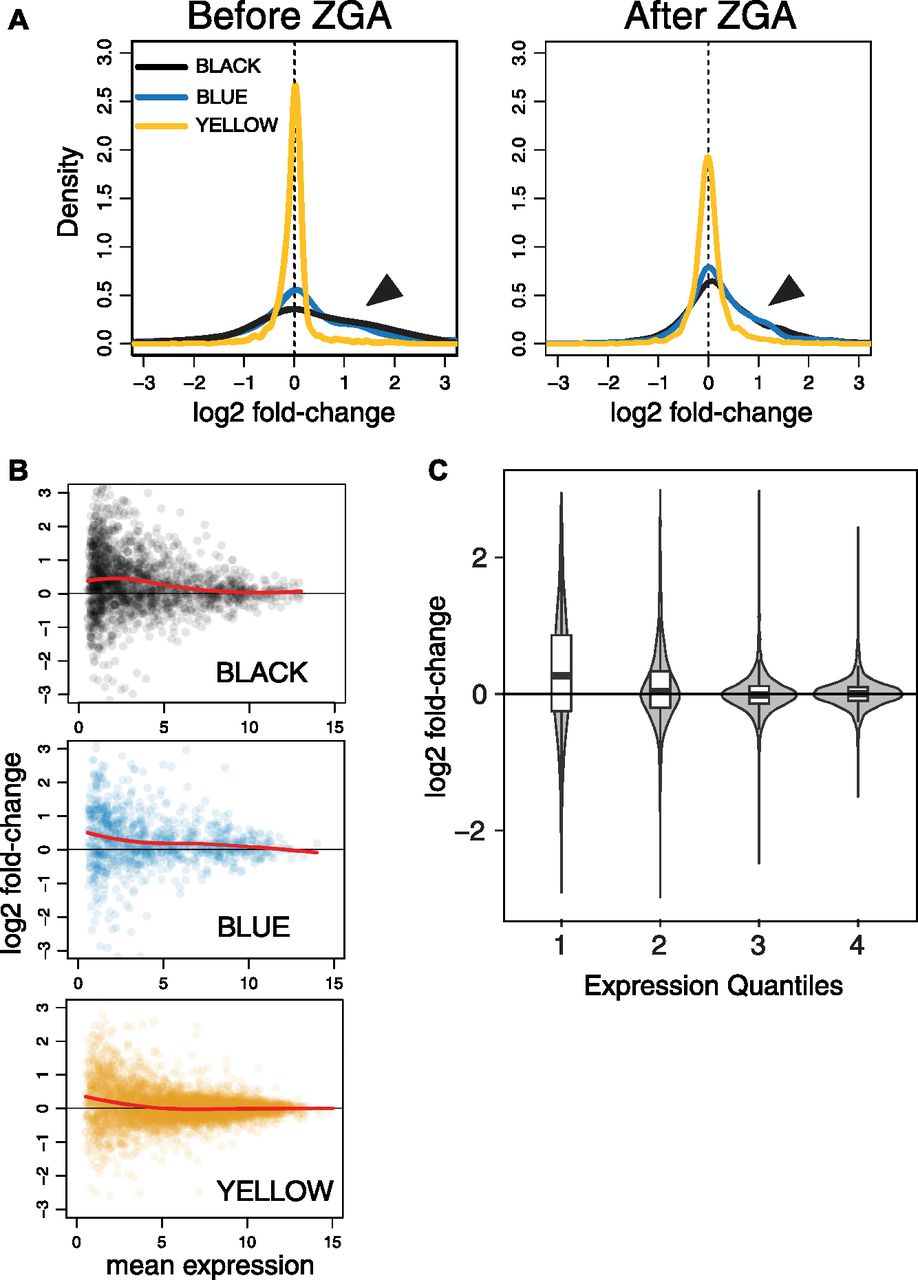 Chrac Acf Contribute To The Repressive Ground State Of Chromatin Illustration Based On A Diagram By Lehman Marks Phd Used With Download Figure Open In New Tab