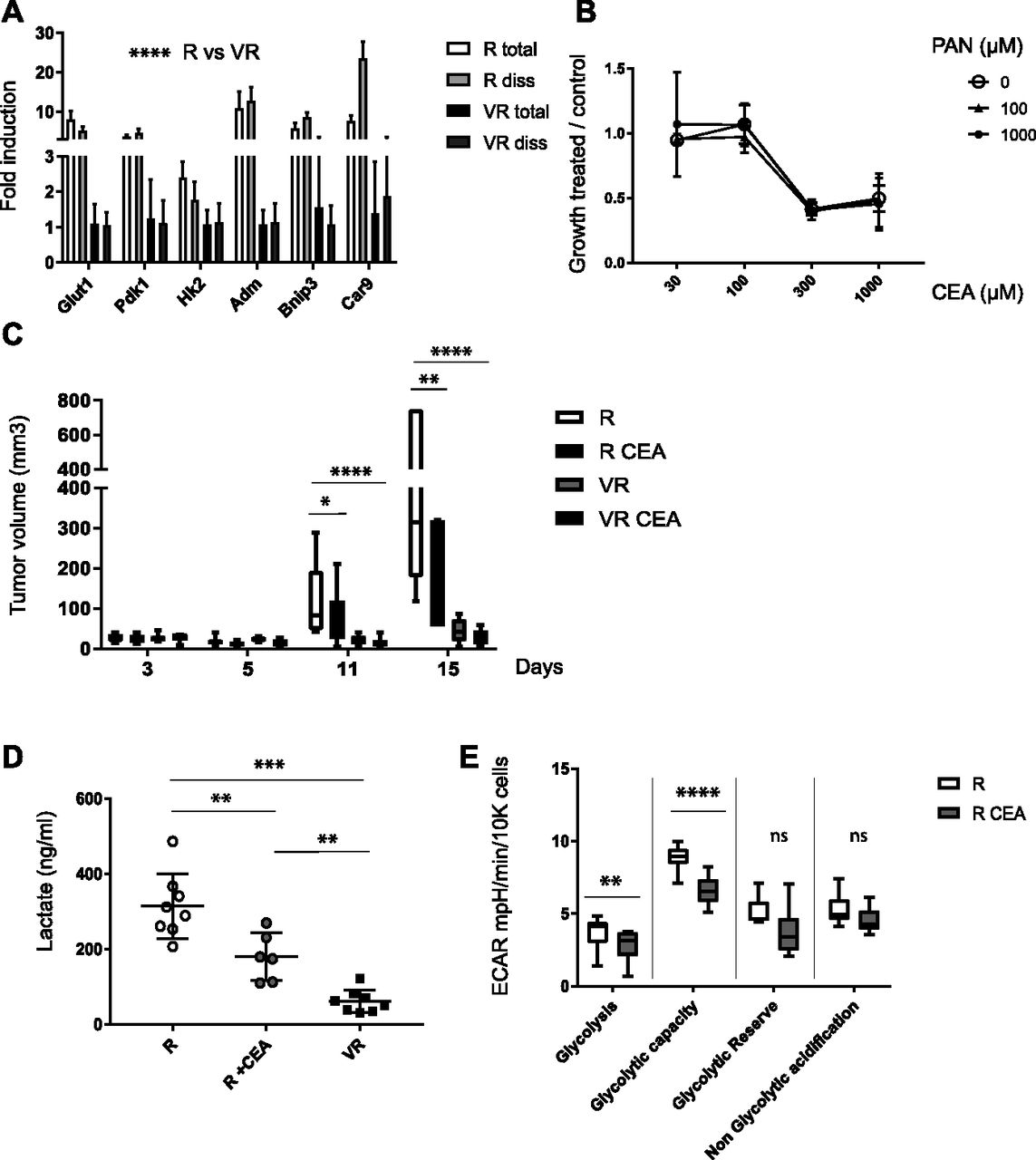 Vnn1 pantetheinase limits the Warburg effect and sarcoma growth by