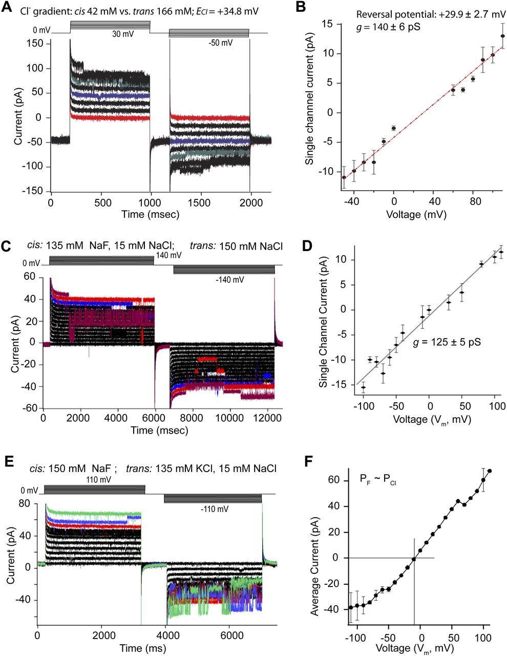 Secretory Granule Protein Chromogranin B Chgb Forms An Anion Categorybandreject Filter Circuits Wikimedia Commons Download Figure