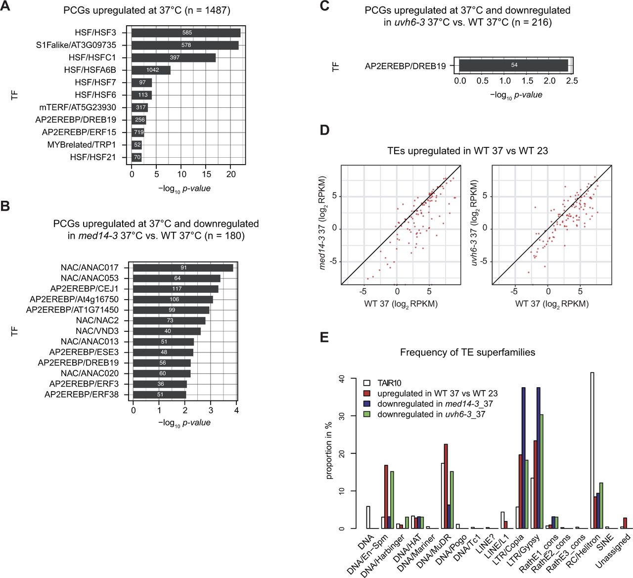 A role for MED14 and UVH6 in heterochromatin transcription