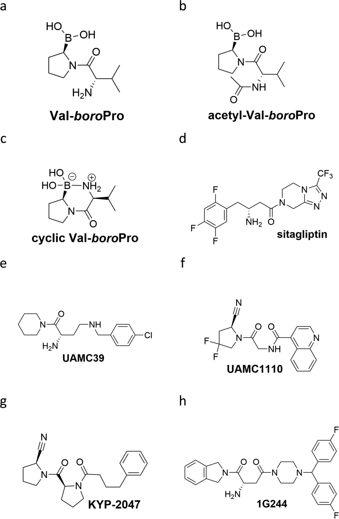 DPP8/DPP9 inhibition elicits canonical Nlrp1b inflammasome hallmarks