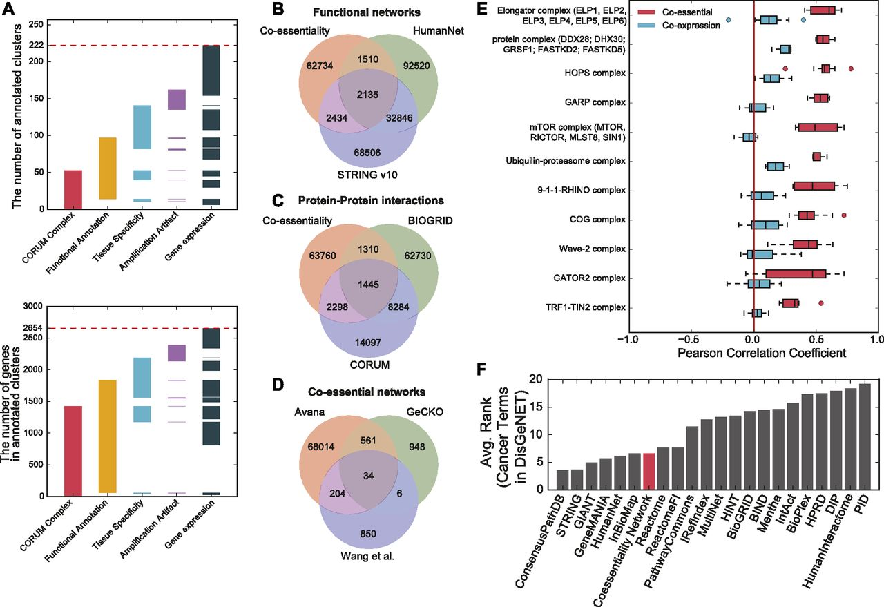 A network of human functional gene interactions from