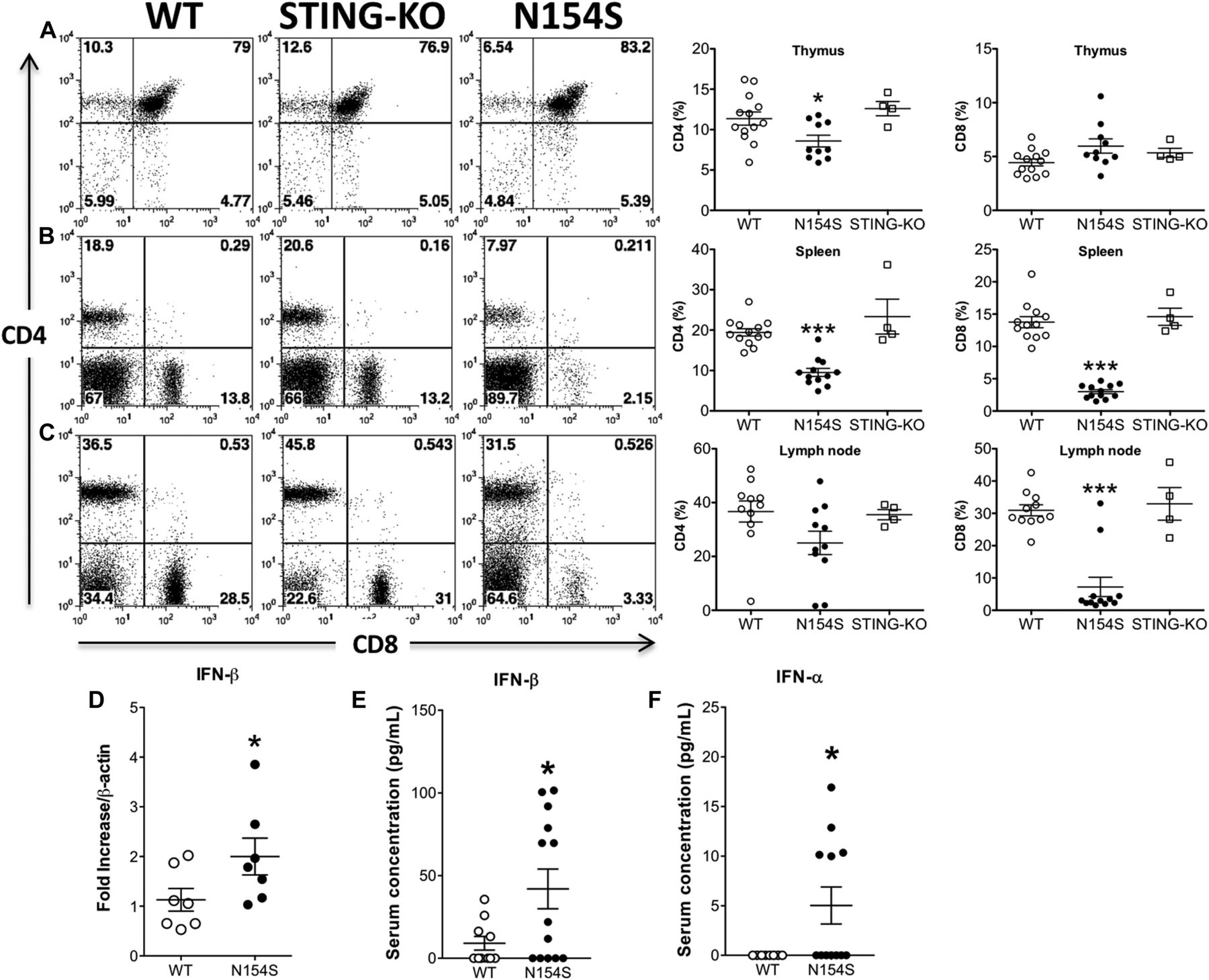 Expression of a constitutively active human STING mutant in