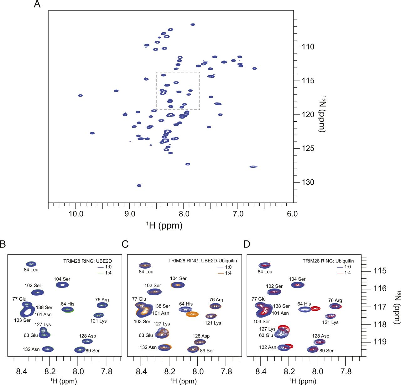 Characterisation of class VI TRIM RING domains: linking RING