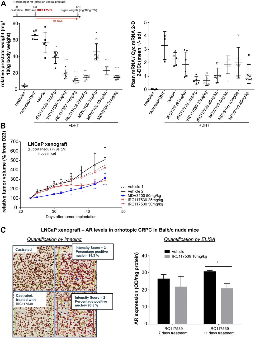 A molecule inducing androgen receptor degradation and