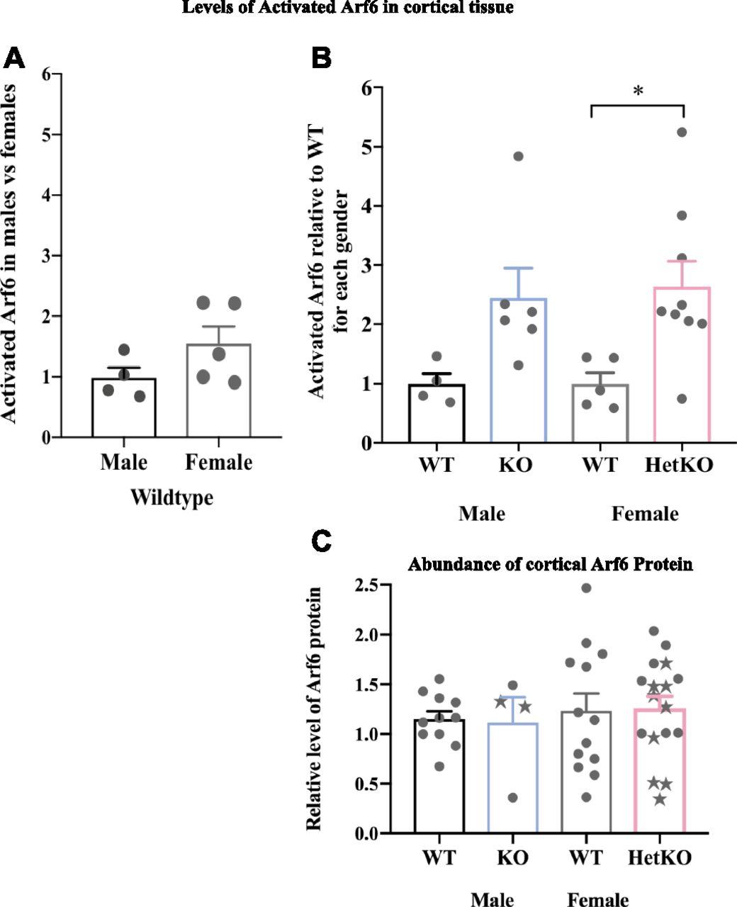 Heterozygous loss of function of IQSEC2/Iqsec2 leads to