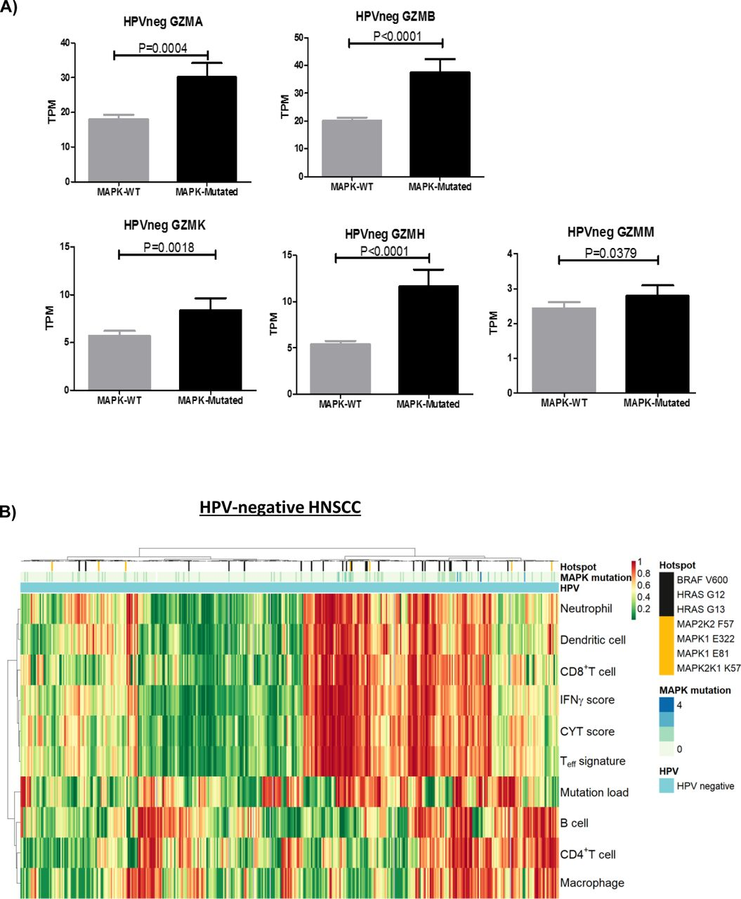 Mapk Pathway Mutations In Head And Neck Cancer Affect Immune Microenvironments And Erbb3 Signaling Life Science Alliance