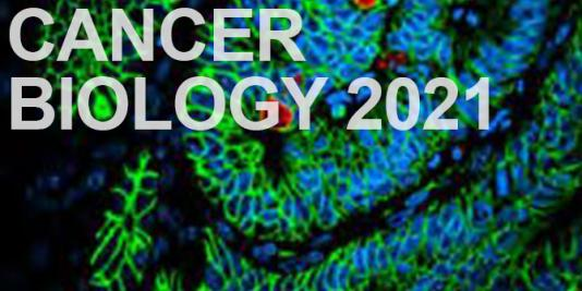 Cancer Biology 2021 special collection