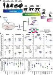 Conservation of cell-intrinsic immune responses in diverse nonhuman primate species