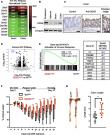 DDX5 promotes oncogene C3 and FABP1 expressions and drives intestinal inflammation and tumorigenesis